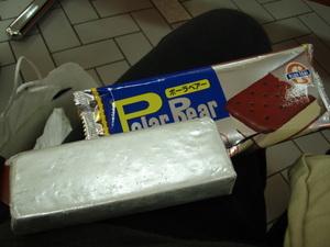 Pc170254